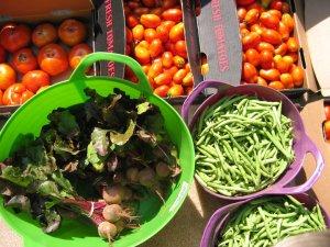 CSA Harvest